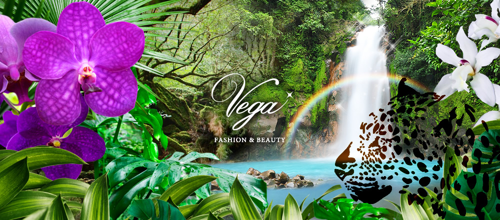 VEGA FASHION AND BEAUT